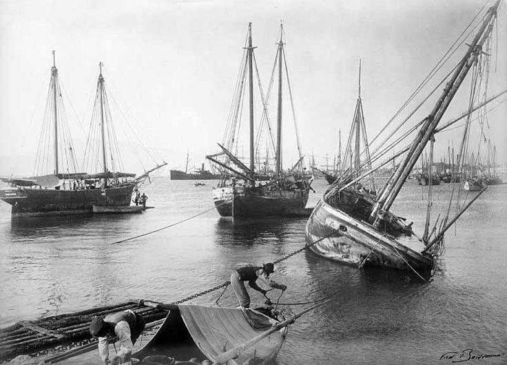 Frédéric Boissonnas, 1907, λιμάνι Πάτρας