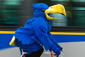 "UBC - ""Thunderbird"" #university #thunderbird #UBC    OOHLALA"