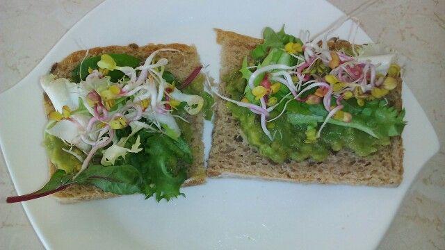 Kanapka- chleb żytni ze slonecznikiem i pastą z avokado+ kiełki.Miłego Dnia