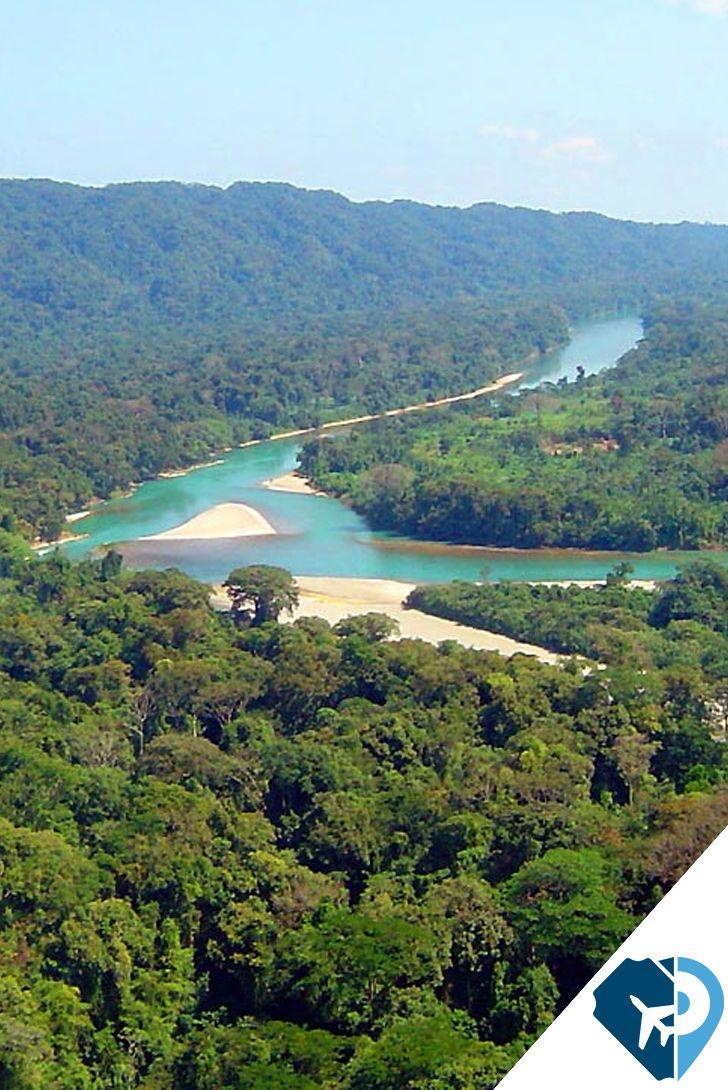 La Selva Lacandona es una región tropical localizada en el estado de Chiapas, en el extremo sureste de la República Mexicana. Protagonista de tiempos en los que todavía no existía el hombre, esta imponente área verde deleita con sus formas y características especiales, únicas en el mundo.