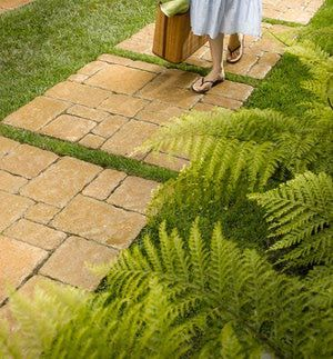 10 Front Walkways For Maximum Curb Appeal: Front Walkway Idea: Grass Between Pavers or Pavers Between Grass?