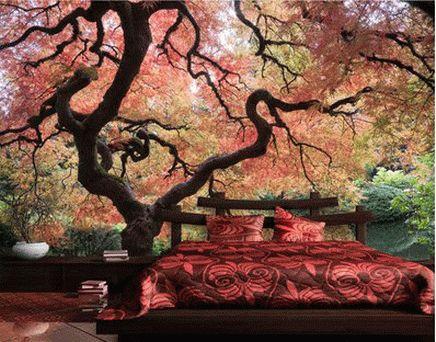 Japanese Garden Bedroom Wall Murals