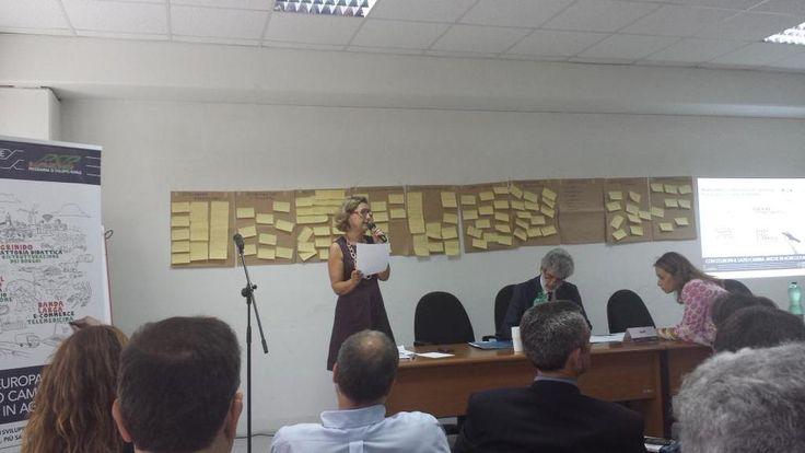 @pinamaiorano occorre favorire il dialogo tra le banche e le #imprese agricole #innovalagricoltura @RegioneLazio