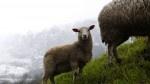 Escapada romántica de fin de semana a Asturias: casa rural Los Riegos