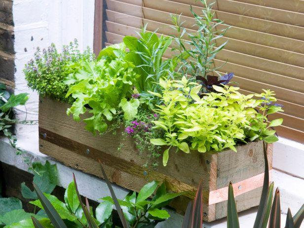 Best Of Balcony Garden Boxes