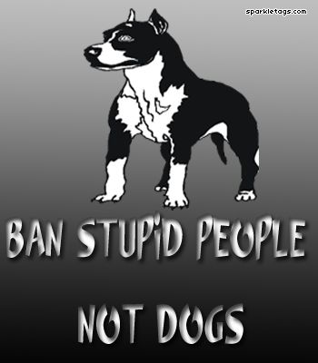 END BSL: Sayings, Luvly Dogs, Pit Pride, Doggies, Sono Percepiti, Amstaff Pit, Pittie