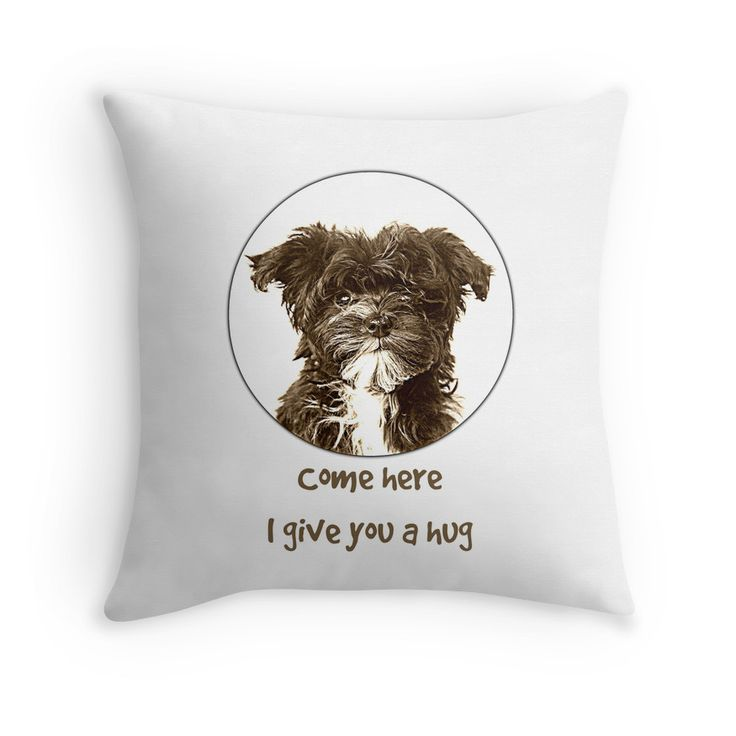 Bolonka Zwetna pad. This little dog on the cushion can be ordered at: https://www.redbubble.com/people/bbrigitte/works/23492568-come-here?p=throw-pillow&ref=artist_shop_grid