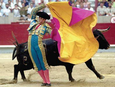 Bull Fighting in Spain - I know many people squirm, and object when I say I want to see this, but I always have.