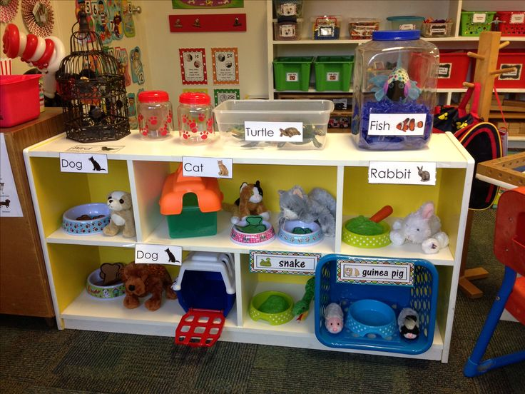 Dramatic Play Preschool Pet Clinic Veterinary Clinic Pet Shop