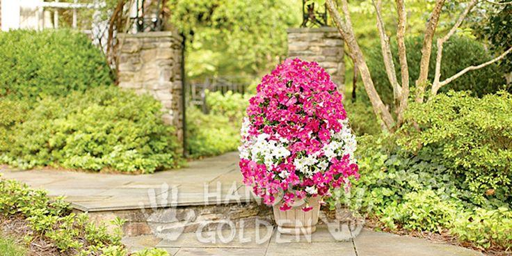 Вертикальная цветочная башня