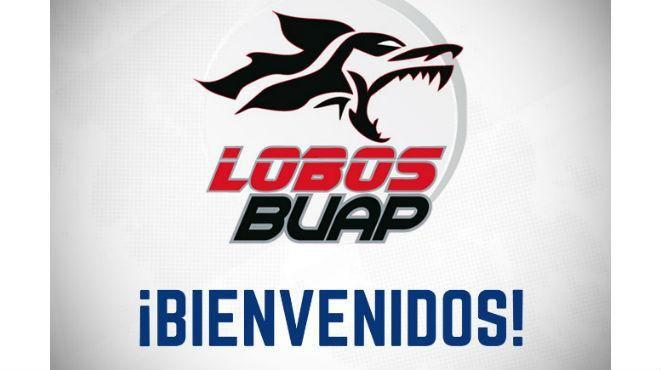 Chivas, Cruz Azul, Tigres... clubes felicitan a los Lobos BUAP ...