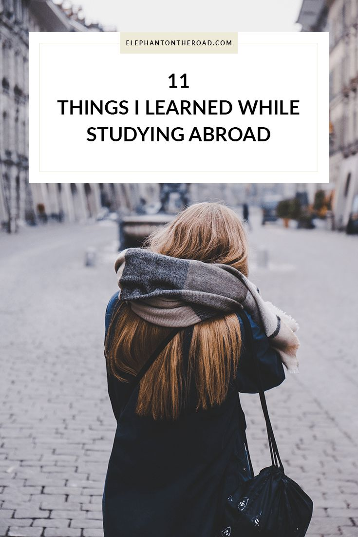 Things I Learned While Studying Abroad. Elephant on the Road.