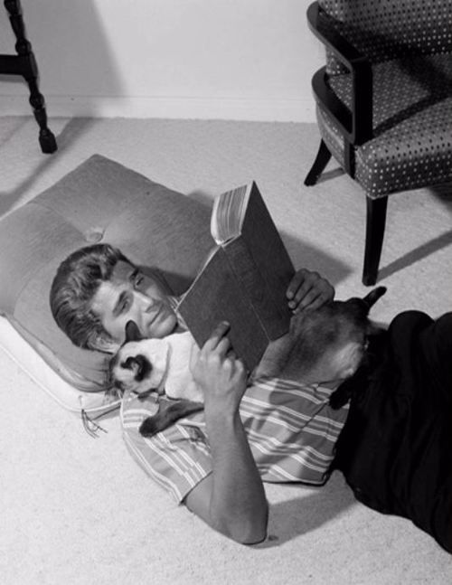Michael Landon and kitty friend read.