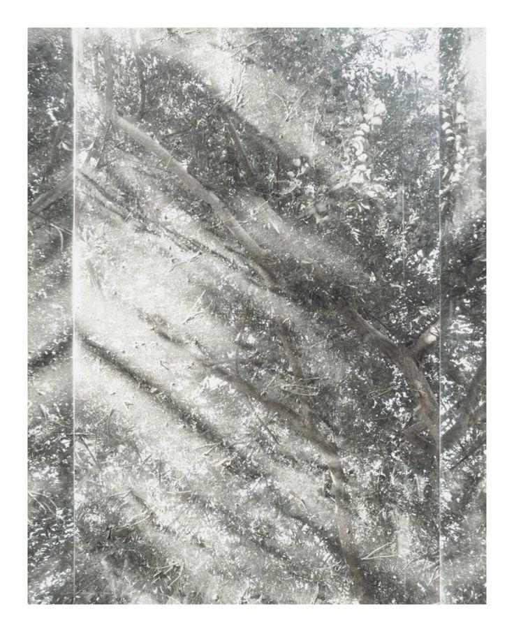 Luisa Lambri Untitled (Sheats-Goldstein House, #07), 2007 Laserchrome print 34 5/8 X 28 7/8 in (87.95 X 73.34 cm) Copyright: the artist