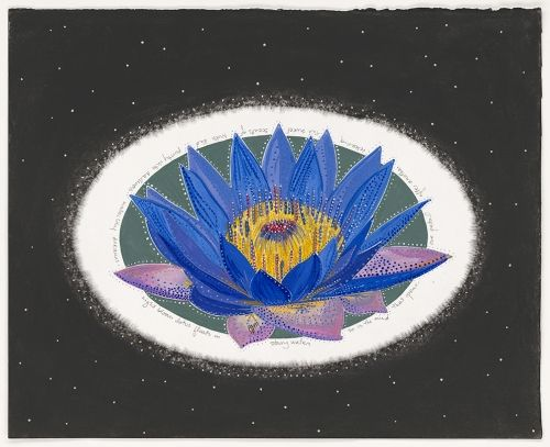 """Water Lily Dreams """"night-bloom lotus floats in starry waters,  so is the mind…"""