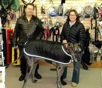 tallest female dog world record set by Great Dane Morgan owned by Cathy and Dave Payne