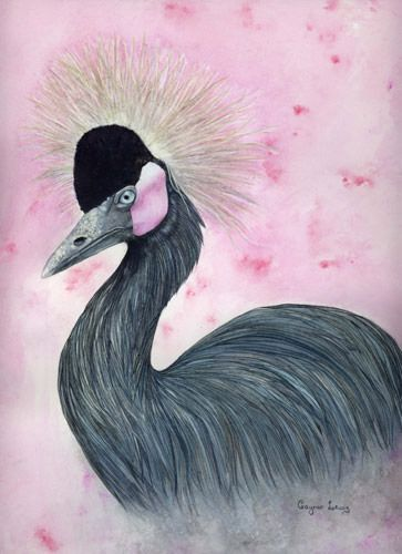The Crowned Crane ~ watercolours