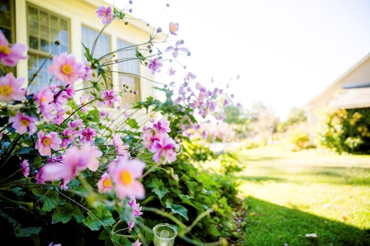 Spring is the perfect time to sell your home.  With the market heating up, Robinson Property can help you get the amount you believe your home is worth.  We have the best people in sales, marketing and leasing to help your family build towards a better future.  Phone 4902 7222 for the Newcastle area or 4984 0555 for the Port Stephens area.