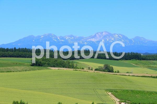 美瑛の丘と大雪山系