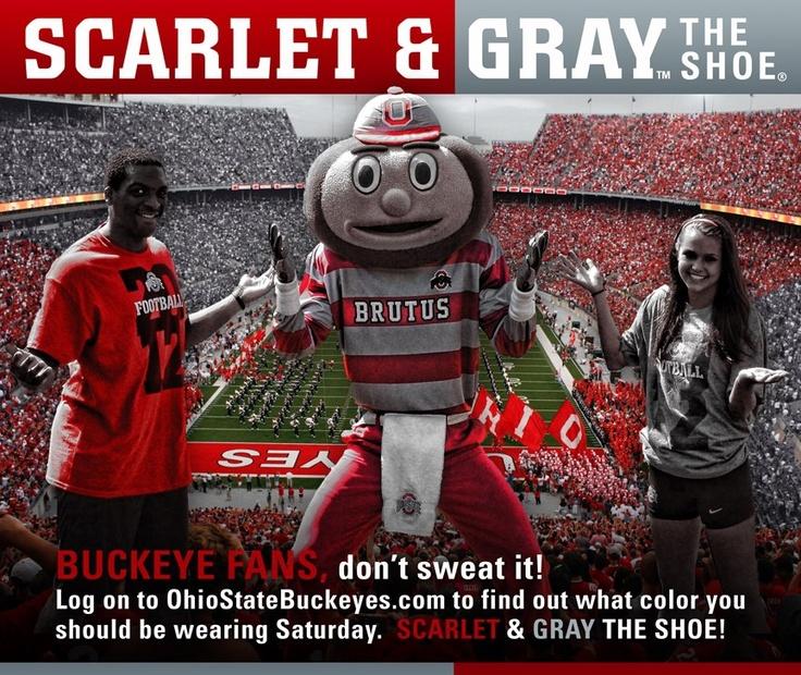 Scarlet and Gray the 'Shoe!  GO BUCKS!!!: Buckeye Corner, Kjs Choice, Bleed Scarlet, State Buckeye, Buckeye Born, Ohio State