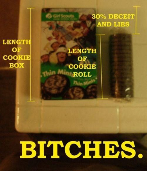 I knew something wasn't right...dang them Girl Scouts!: Truths Hurts, Little Girls, Thin Mint, Girl Scouts, Thinmint, Funny Quotes, Girls Scouts Cookies, Pictures Quotes, True Stories