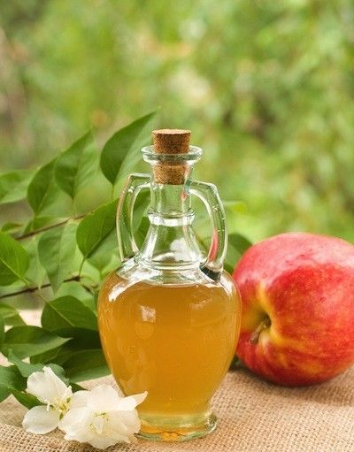 10 Foods To Fight Candida | Natural Healing | Apple cider