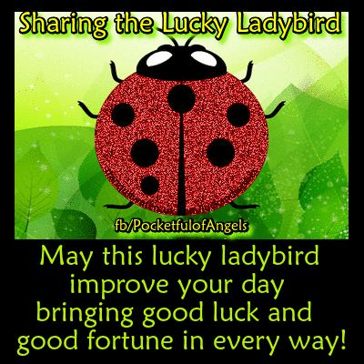 """Looking for more GOOD LUCK ? CLICK HERE ➡ http://www.tranquilwaters.uk.com/luckandwishes for more images of good luck """"charms"""", blessings and wishes. AND you can send off your wishes your Angels, here ➡ http://www.myangelcardreadings.com/makeawish OR Make a fairy wish & have it sprinkled with fairy dust, here ➡ http://www.myangelcardreadings.com/fairymagic OR at the lucky wishing well, here ➡ http://www.myangelcardreadings.com/fairieslivehere"""