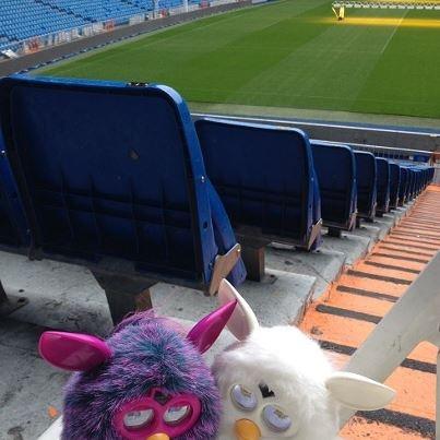Parece que los Furby quieren subir a lo más alto de la más alta torre para ver el partido como príncipes y no perderse detalle…