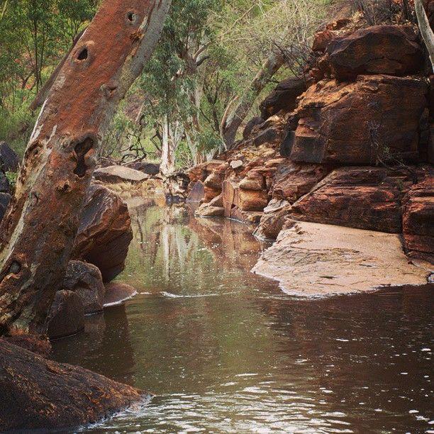 Watarrka National Park, Petermann, Australia - The flooded Kings...