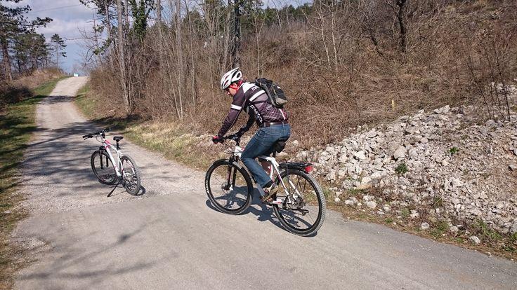 Enrico Merlani durante la pedalata insieme a TeleCapodistria per la trasmissione Istria e dintorni, sulla ciclabile della vecchia ferrovia Erpelle - Trieste