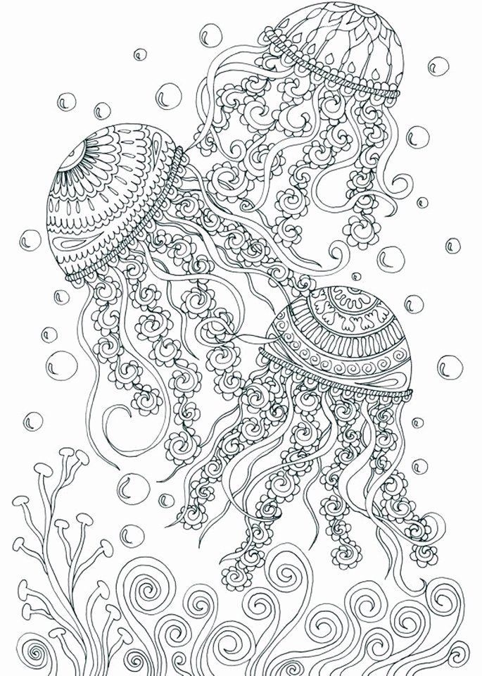 Summer Coloring Pages For Adults Unique Get This Free Adults Printable Of Summer Coloring Pages In 2020 Ocean Coloring Pages Coloring Pages Summer Coloring Pages