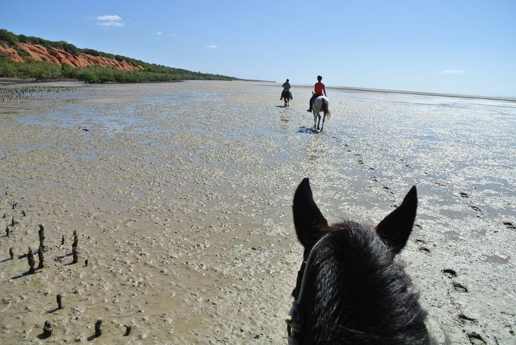Endless beaches in Mozambique... #mozambique #horsebackriding #beachriding