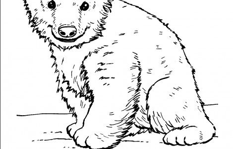 Animal planet coloring pages alphabet fun pinterest for Animal planet coloring pages