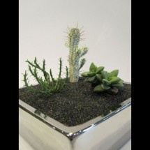 Silver and Gold Low Profile Planters