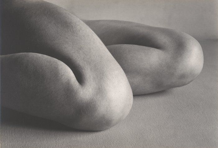 Edward Weston, Knees, 1927 //   photograph | gelatin silver print
