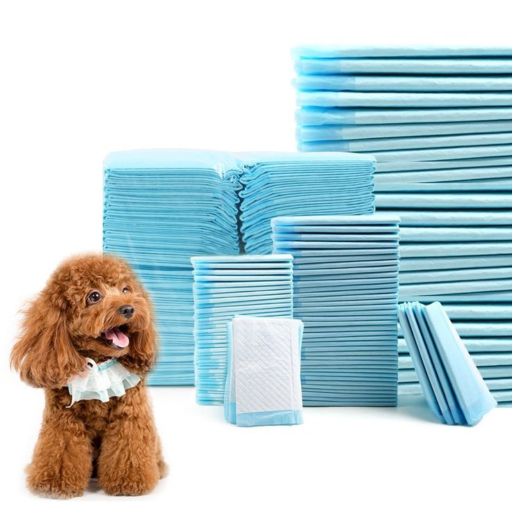 ClothingTalks Puppy Pads Dog Training Pads Underpads * Click image for more details. (This is an affiliate link and I receive a commission for the sales)