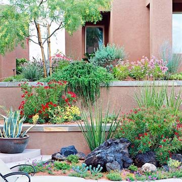 54 best images about desert landscaping ideas on pinterest for Easy care shrubs front house