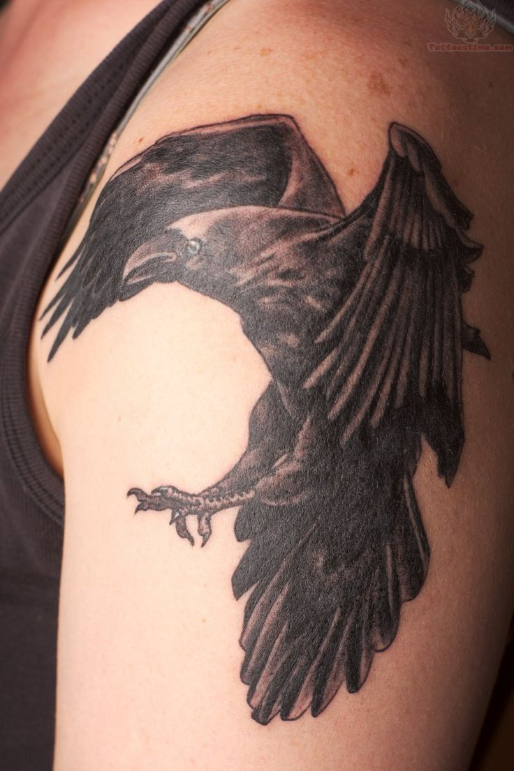 168 best crow tattoos ideas images on pinterest for Raven bird tattoo