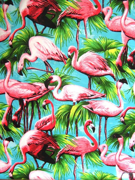 #pattern #flamingo Encontrado en americanapparel.tumblr.com