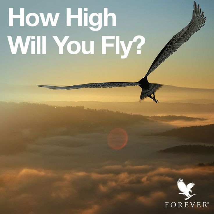 With Forever the sky is the limit, so how high will you fly? #forever #foreverliving #business