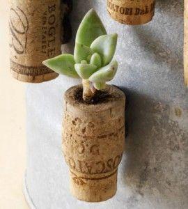 Mini Wine Cork Planters