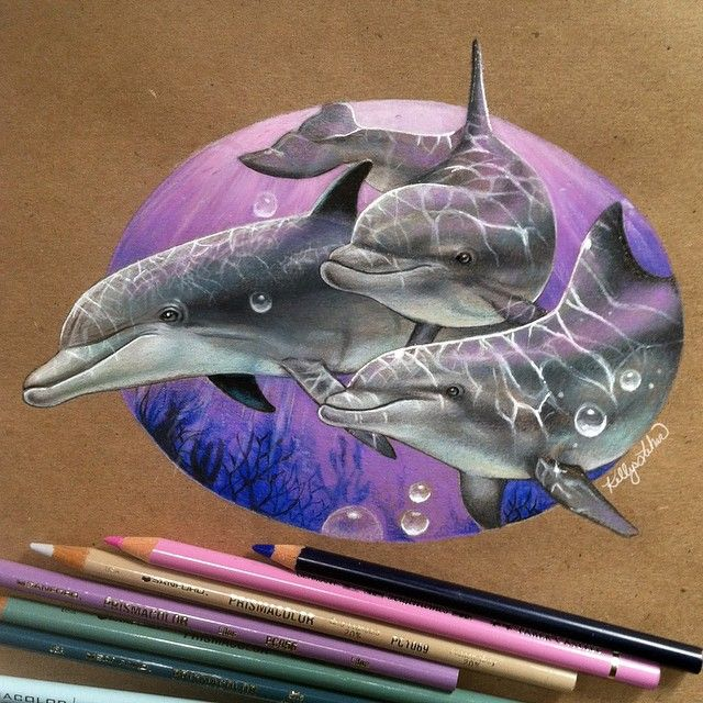 Dolphins (Colored Pencil) by Kelly Lahar