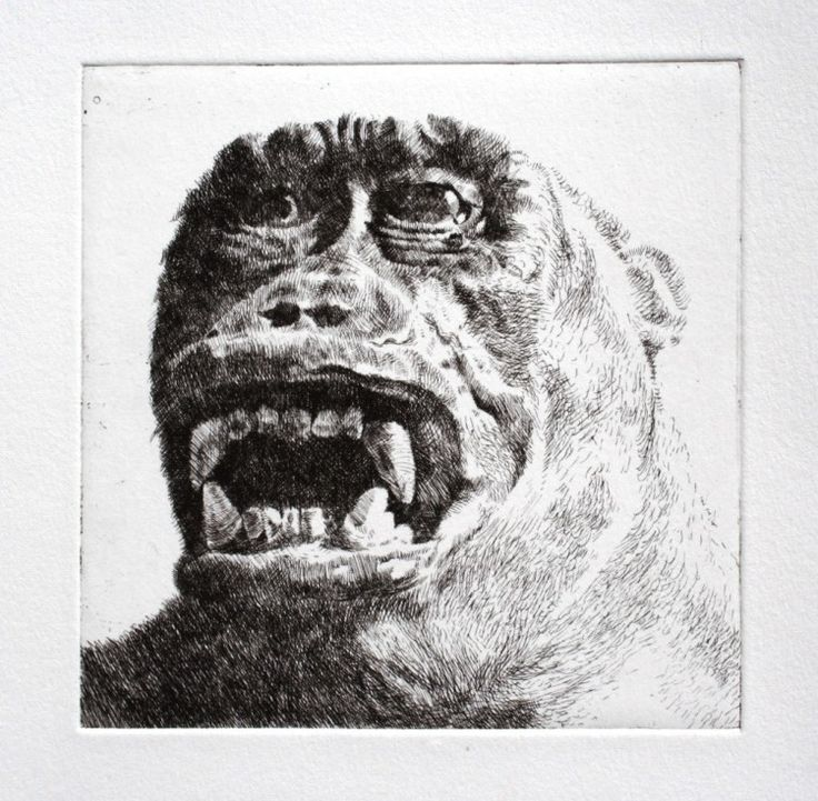 "Rust-en-Vrede Gallery – ART EXCHANGE: MEXICO - Participating SA Artist Paul Painting - ""Ape I"" Etching with Aquatint"