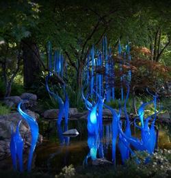 at the Dallas ArboretumDallas Arboretum, Chihuly Glasses, Favorite Places, Glasses Art, Artists Dale, Chihuly Exhibitions, Art Glasses, Dale Chihuly, Botanical Gardens