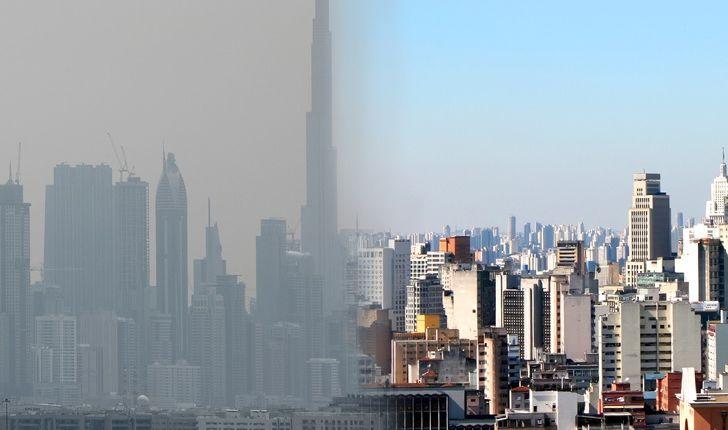 أبراج Biourban أشجار صناعية حولت الهواء الملوث لأكسجين نقي New York Skyline Skyline New York