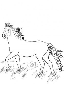 Find This Pin And More On Coloring For Fun Mustang Wild Horse Page