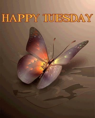 GOOD MORNING! Happy Tuesday!