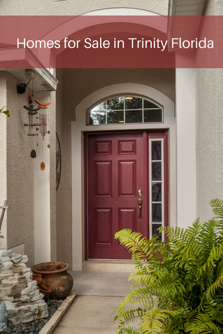 In Trinity FL, you can find homes for sale in a quiet and peaceful neighborhood with amenities nearby.