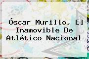 http://tecnoautos.com/wp-content/uploads/imagenes/tendencias/thumbs/oscar-murillo-el-inamovible-de-atletico-nacional.jpg Liga Aguila. Óscar Murillo, el inamovible de Atlético Nacional, Enlaces, Imágenes, Videos y Tweets - http://tecnoautos.com/actualidad/liga-aguila-oscar-murillo-el-inamovible-de-atletico-nacional/