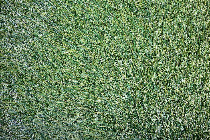Decor4Rent: Искусственный газон Le Parc Collection